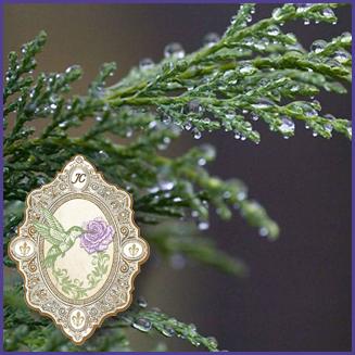 E.O.– Blue Cypress