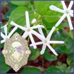 E.O.– Jasmine Absolute grandiflorum