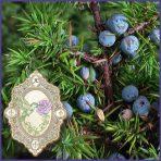 E.O.– Juniper Berry