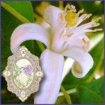 E.O.– Petitgrain (Bigarade)