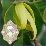 E.O.– Ylang Ylang Extra