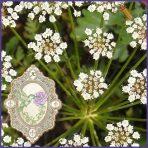 E.O.– Anise Seed