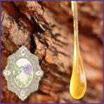 E.O.– Frankincense- India
