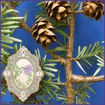 E.O.– Spruce Hemlock
