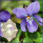 E.O.– Violet Leaf Absolute