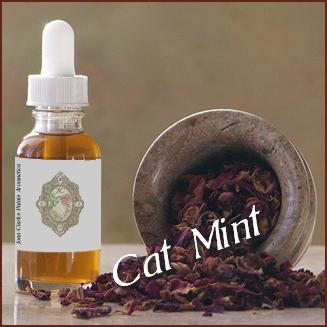 Tincture– Cat Mint