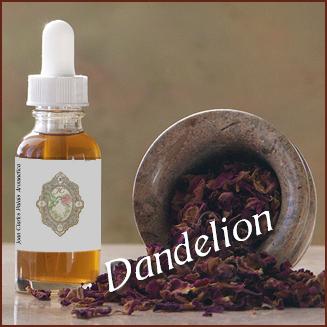 Tincture– Dandelion